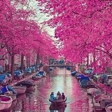 """Amsterdam ,,Niewiarygodne miejsca na Ziemi"""""""