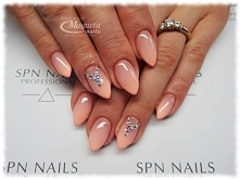 Ombre Master Cover + Whops!   Nails by Monika, Studio Magnetic Nails Monika S...