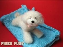 Pudel figurka z wełny / Needle felted poodle, maltipoo Filcowanie figurka