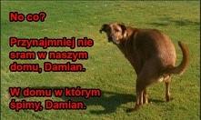 oj Damian