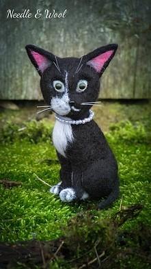 Kotek z zielonymi oczami <3