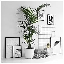 Biel, czerń i rośliny - ooooo taaak :) To połączenie zawsze idealne! Totalnie mój styl, bez dwóch zdań!