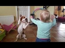 Pies to rodzina, a rodzina jest w życiu najważniejsza