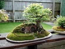 Chatka krasnoludkow, a moze piwnica radziecka? :D jak by nie nazwac, ten mini ogrod jest wspanialy!