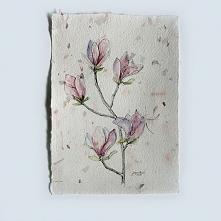 Magnolie. Akwarela na papierze czerpanym