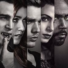 """Podsumowanie 2 sezonu """"Shadowhunters"""" już na blogu! (link po klikni..."""