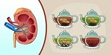 4 napoje, które pomogą ci oczyścić nerki i usunąć toksyny z krwi!