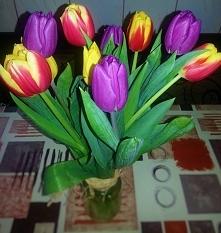 Tulipanki..  Od dobrego zię...