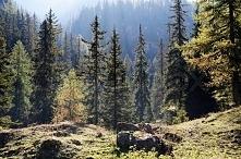 Kocham góry <3