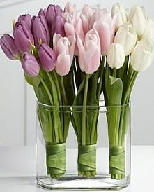 wiosna *_*