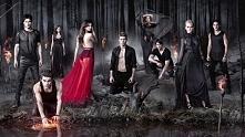 5. The Vampire Diaries (2009 - 2017) No i finito, opowieść o wampirzych braci...