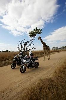 Jazda motocyklem jest psych...