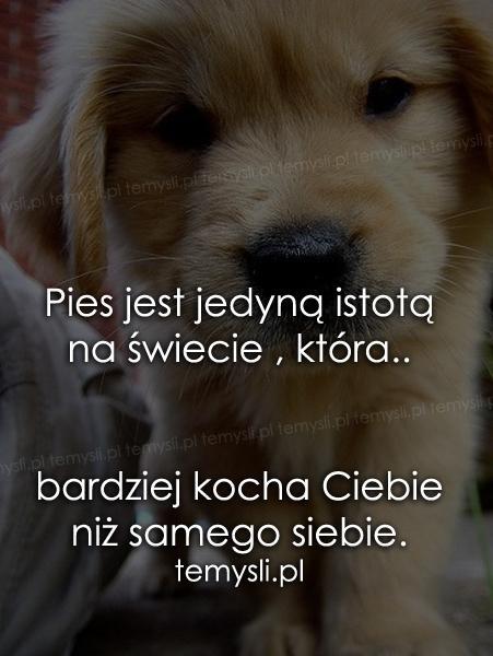 Zgadzam się :)