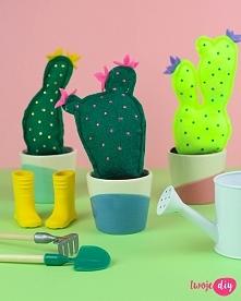 Filcowe kaktusy DIY - zobacz tutorial na twojediy.pl