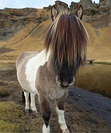 Islandia ❤️