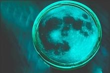 Poczuj światło księżyca..