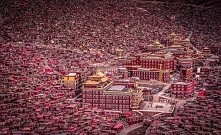 The largest buddist academy...