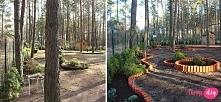 Zobacz jak odmienić ogród i założyć trawnik na twojediy.pl