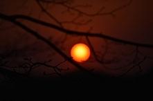 sun...