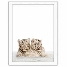 Dzisiaj zaglądamy do dzikiej dżungli i prezentujemy Wam obrazy w ramie z pass...