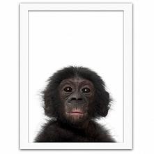 Zabawne i urocze portrety dzikich zwierząt na obrazach w ramie z passepartout rozświetlą swą pozytywną energią każde wnętrze. Nie zaznasz nudy w tak doborowym towarzystwie - zob...