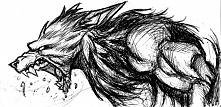 wolf,art