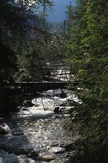 Zdjęcia z wyprawy w góry