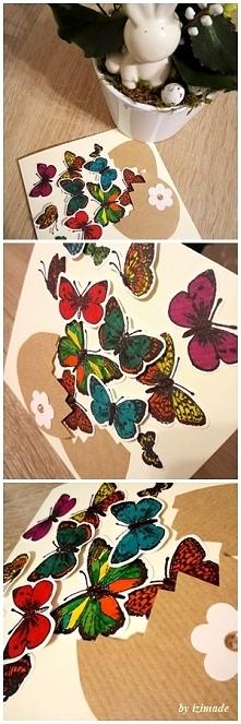 Kolorowo i niestandardowo:)Motyle  z jajka??? :)