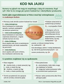 Jak czytać kody na jajku