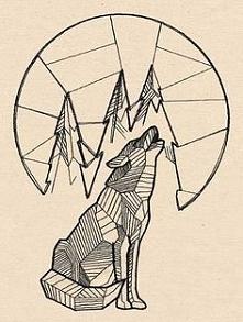 szkic wilk