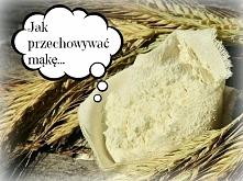 Więcej na glodnapolka.pl JA...