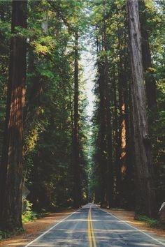 Biegnę drogą bez celu