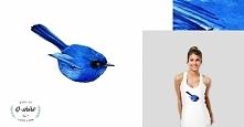 Niebieski ptak z www[kropka...