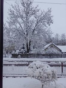 zima tej wiosny jest przepiękna