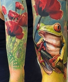 żaba i maki