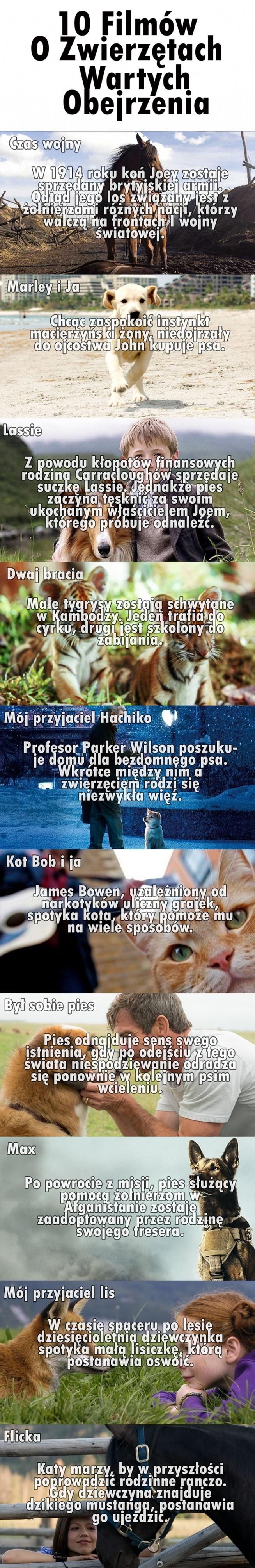 10 filmów ze zwierzętami wartych obejrzenia.