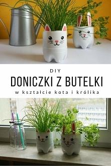 DIY / Zrób to sam Doniczki z plastikowej butelki w kształcie kota i królika :) Idealne na zioła i małe roślinki :)