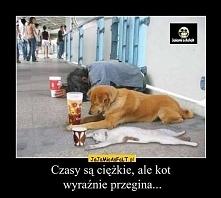 kot najlepszy:P