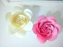 Prześliczny kwiatek, który powstał z czterech kolorowych kartek. Instrukcja j...