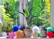 pompony-dekoracje - ArkanyM...