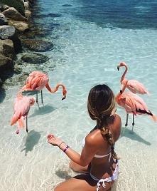 **beach**