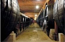 Cała prawda o siarczynach w winie.  W każdym winie są siarczyny - to naturaln...