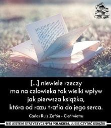 ~Cień wiatru
