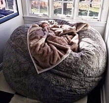 I need this. RIGHT NOW!