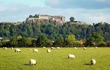Zamek Stirling w Szkocji