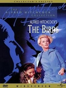 Ptaki (28 marca 1963) Niewielkie nadmorskie miasteczko Bodega Bay zostaje zaatakowane przez niesłychanie agresywne ptaki. Początkowe sporadyczne przypadki zamieniają się szybko ...