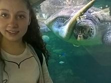 selfie z żółwiem? czemu nie ?!