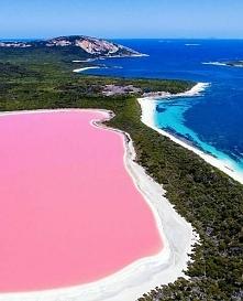 Różowe Jezioro Hillier - Australia :)
