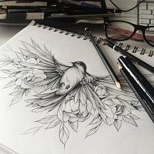 Przepiękny szkic, ptak w locie ...
