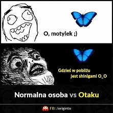 Normalna osoba vs Otaku ;)  Memy z anime, sklep kawaii, koszulki z japońskimi...